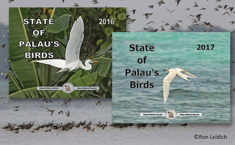 "New Books ""State of Palau's Birds"" Available for Download"